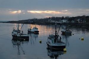 Digby Scallop Fleet