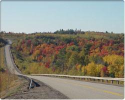 Falls Colours along Route 790