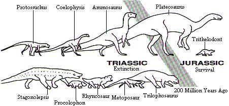 Fundy Dinosaurs