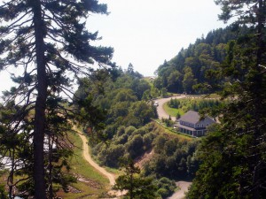 Interpretive Centre from above on the Fundy Trail Parkway