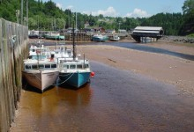 Low-tide-harbour