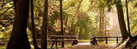 Fundy Parks