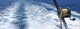 Deep Sea Fishing: One of Canada's Best Spots
