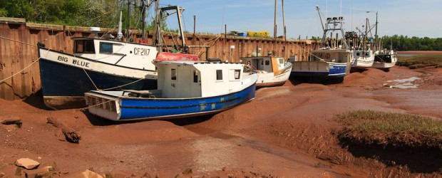 Bay Of Fundy Discover Canada S Natural Wonder