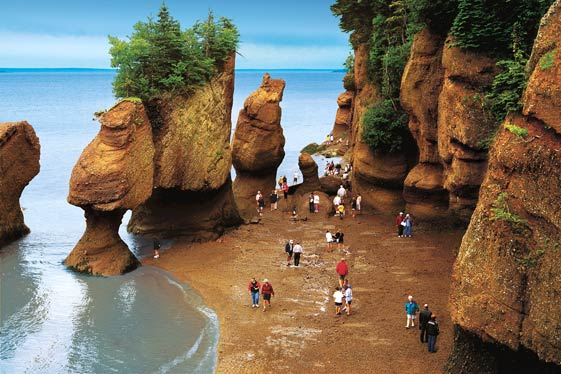 Bay of Fundy Discover Canadas Natural Wonder